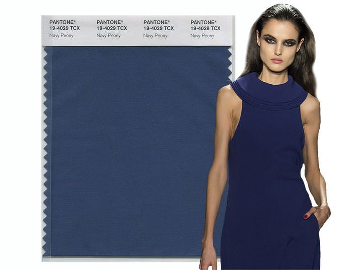 color Navy Peony - 19-4029