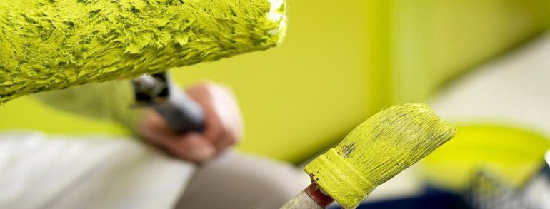 Roller or brush: advantages and disadvantages