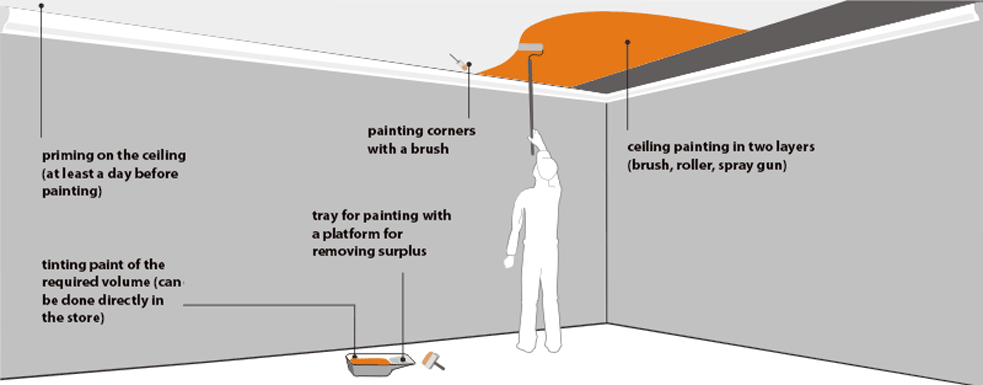 Ceiling Painting Scheme